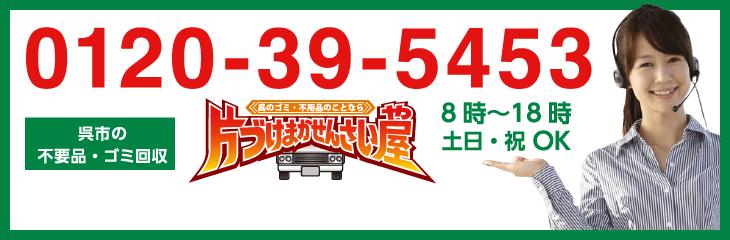 0120-39-5453
